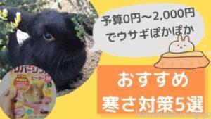 【予算2,000円以内】うさぎのオススメ寒さ対策5選!うさぎに必要な冬支度とは?
