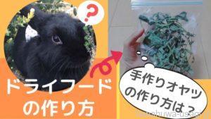 【完全無添加】うさぎの手作りおやつ~乾燥野菜・乾燥果物・乾燥野草の作り方