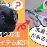暴れるうさぎの爪切り方法~保定コツはタオルと洗濯ネットにあり!?