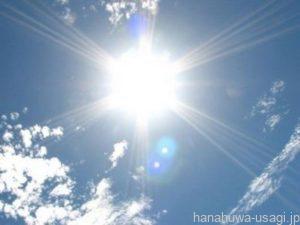 うさぎ用ケージを直射日光の当たらない位置に移動