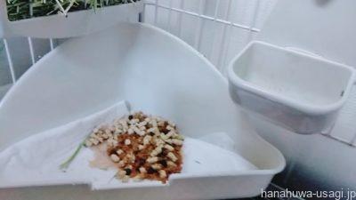うさぎトイレ掃除方法「トイレシートやトイレ砂を掴む」