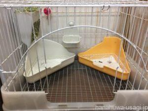 うさぎ避妊手術でトイレのしつけがしやすくなる