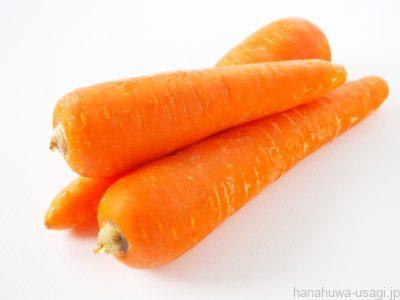うさぎ糖分が多い野菜と果物のあげすぎは「虫歯や肥満リスク」を高める