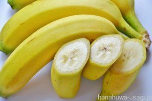うさぎ果物のあげすぎはうっ滞リスクを高める原因になる