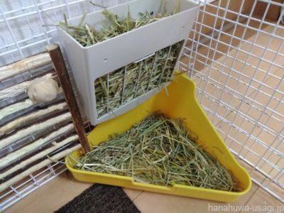 寝る前にうさぎの牧草をたっぷり補充する