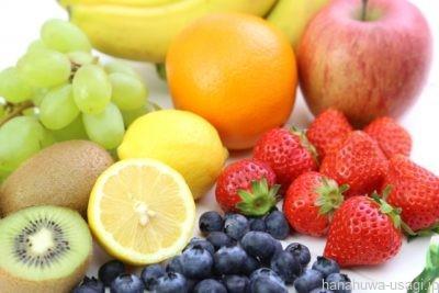 うさぎのエサをペレットなしにするなら果物は極力与えない