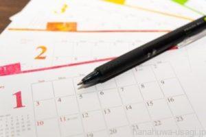 うさぎ生後6~12か月までの避妊手術でリスクが大幅減