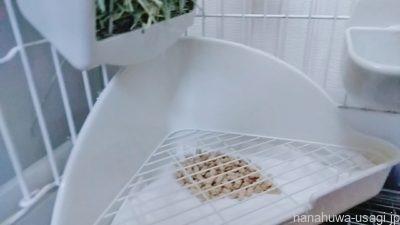 キレイなトイレシートとトイレ砂を設置して掃除完了