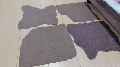 うさぎに齧られた床材