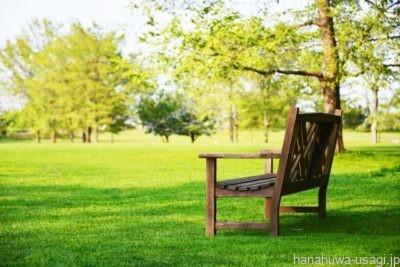 うさんぽの場所(公園、土手、庭)