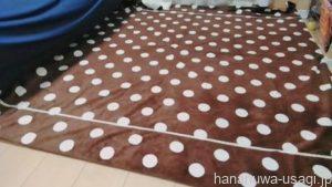 絨毯類は設置が楽だけど齧るし粗相するリスクあり