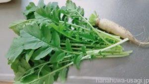 うさぎに野菜を与える頻度は?