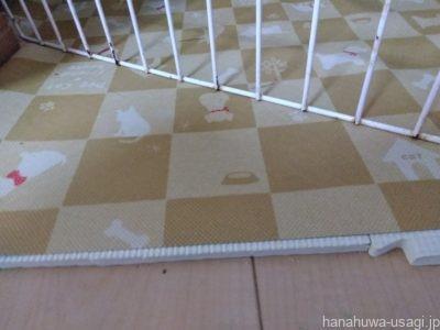 部屋んぽスペースのおすすめ床材「犬猫用防滑マット」