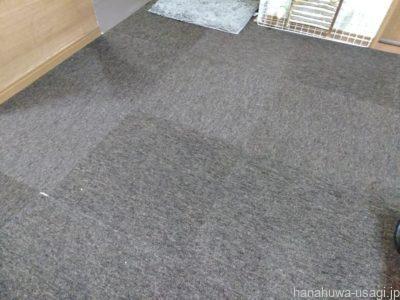 うさぎ用おすすめ部屋んぽ床材「タイルカーペット」の写真