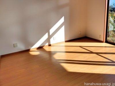 直射日光が当たらない位置へうさぎのケージを移動