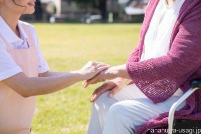 高齢うさぎの介護は?何歳から介護は必要になる?