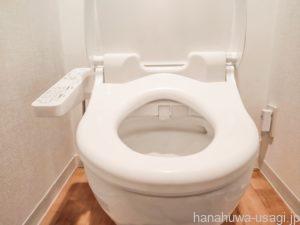 うさぎ流せるトイレ砂はトイレに流していい?