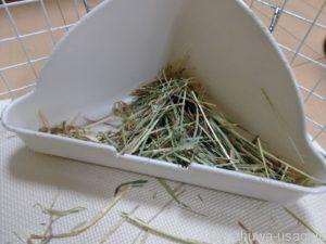 うさぎ外傷や内蔵の病気で牧草を食べなくなっている