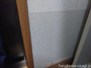 部屋んぽ中の注意点「壁や家具をかじられる」