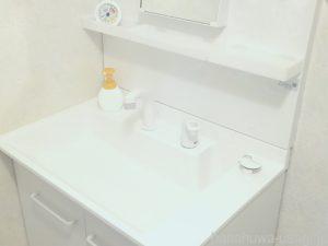うさぎのお尻を洗面台で洗わない