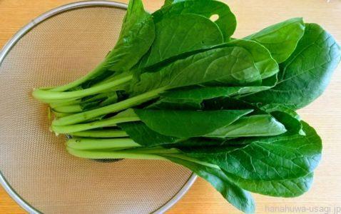 カルシウムを多く含む野菜