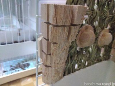 トイレの近くに設置したうさぎ用かじり木