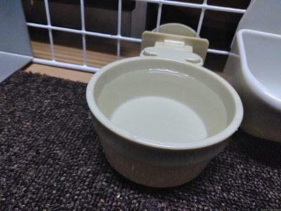 水入れや給水ボトルの水は最低1日1 回は交換する
